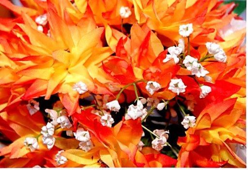 Flowerdesignerconsultant
