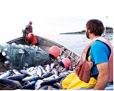270fishing